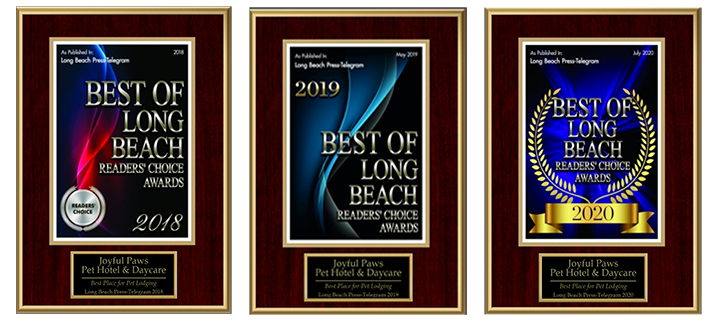 Best of Long Beach 2018, 2019, and 2020
